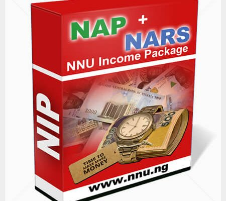 make money online in nigeria with nip on nnu