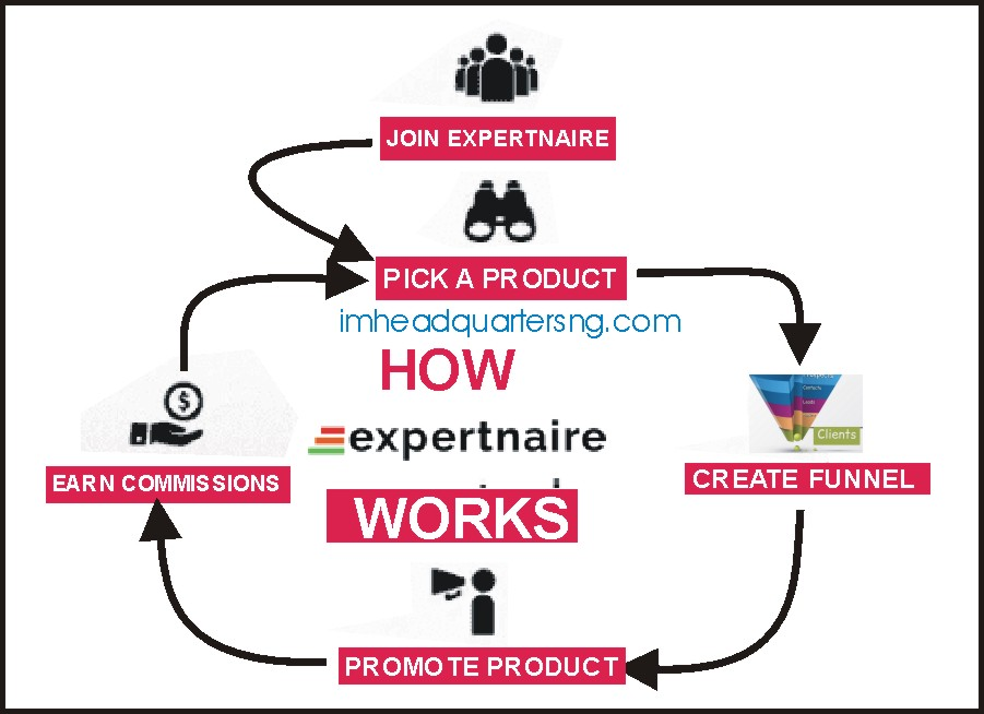 how expertnaire works