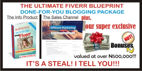 the ultimate fiverr blueprint