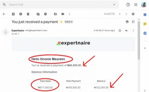 how does expertnaire work
