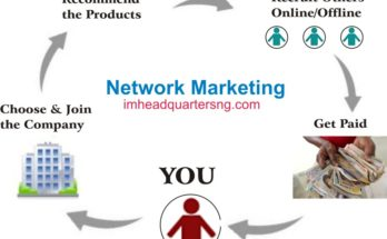 what is network marketing and how does it work